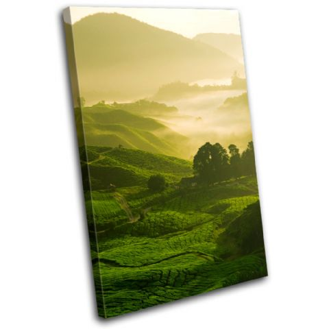 Field Nature Green Landscapes - 13-0048(00B)-SG32-PO